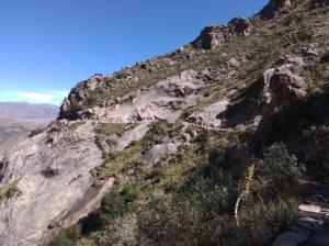 Camino inca Sucre