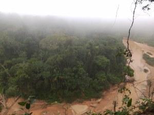 Selva Rurre