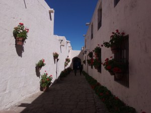C/cordoba Monasterio Sta Catalina Arequipa