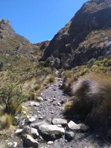 Trek laguna 69 PN Huascan