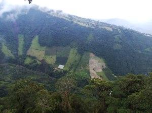 Vistas desde casa del árbol baños ecuador