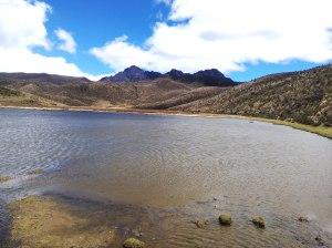Laguna Limpiopungo PN cotopaxi Ecuador