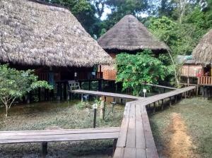 guacamayo ecolodge cuyabeno ecuador